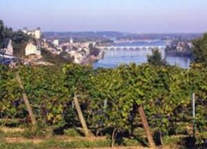 Loire From Saumur Castle