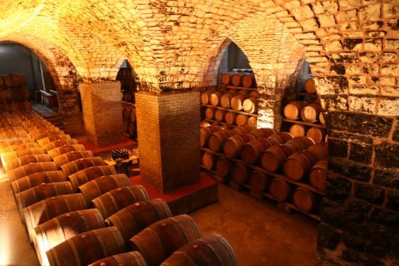 chaeau-musar-cellar