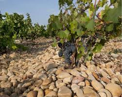 rhone-valley-pudding-stones