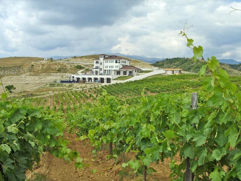 bulgarian-vineyard-and-winery