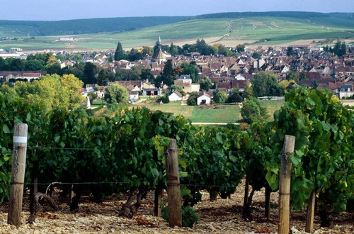village of Chablis in valley
